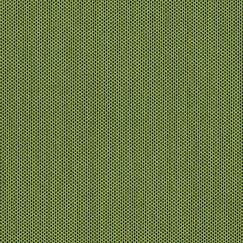 Canvas Turf - 5447