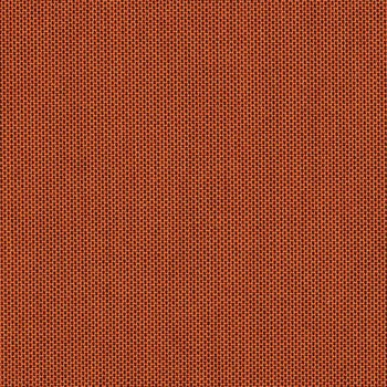 Canvas Paprika - 5451