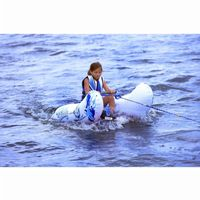 Aqua Buddy Water Ski/Wakeboard Trainer RS02368