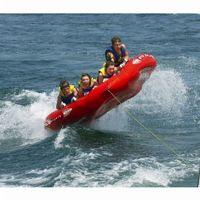 Mega Mambo Towable Tube RS02367