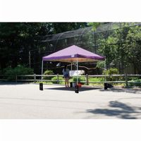 12 × 12 ST Pop-up Canopy, Purple Cover, Black Roller Bag 22707