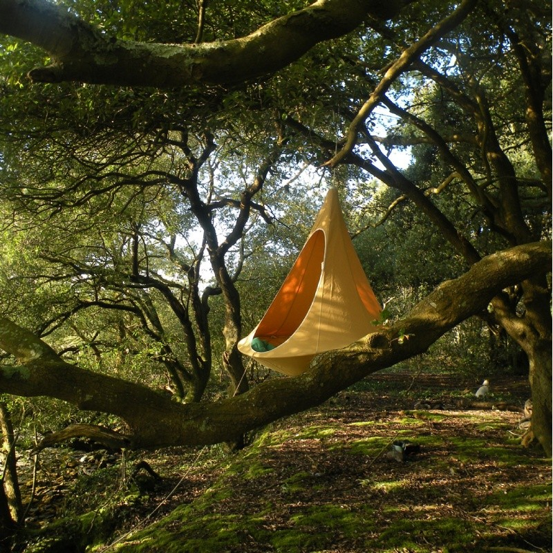 Cacoon Single Hanging Nest Chair Green