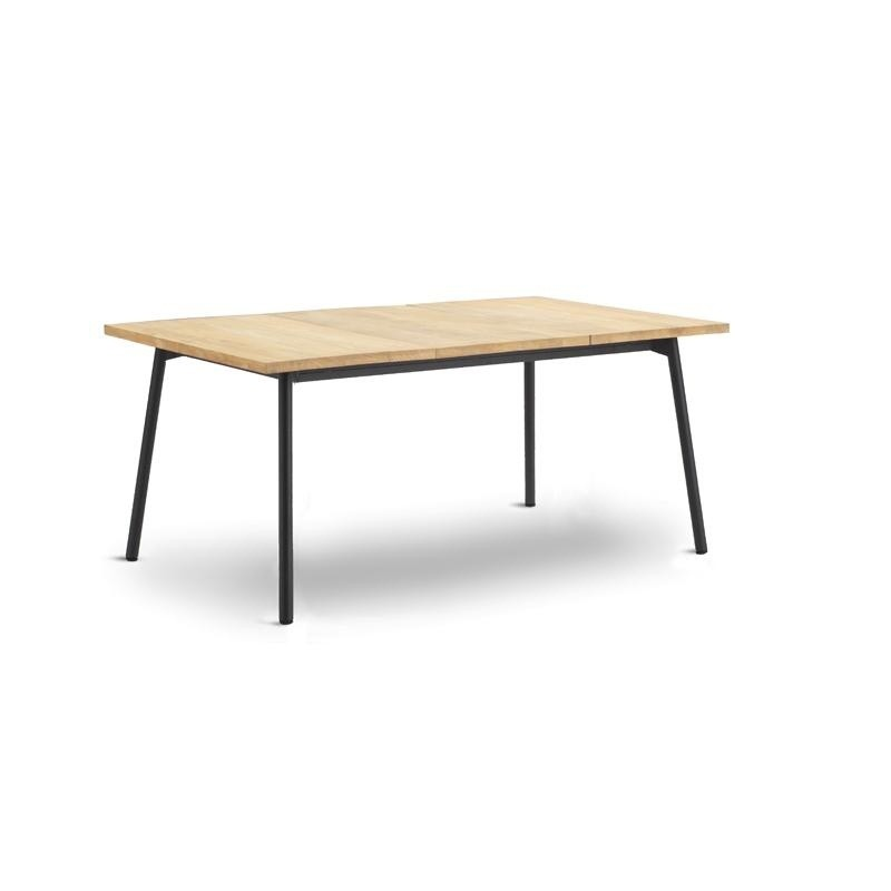 Bitta Rectangle Modern Outdoor Dining Table with Teak Top
