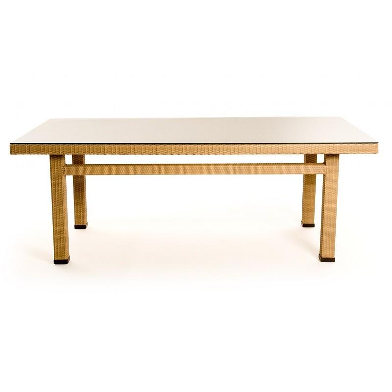 Mayan Resin Wicker Rectangular Dining Table CA604 84 44N