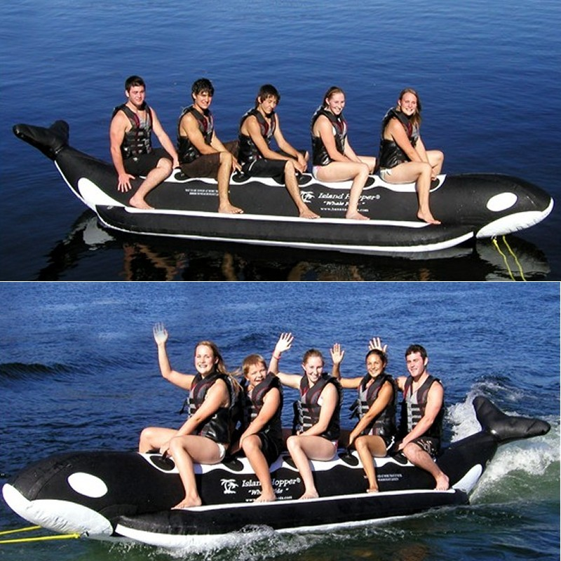 Manta Ray Towable Flying Water Tube: Whale Ride Towable Water Tube 5 Person Inline