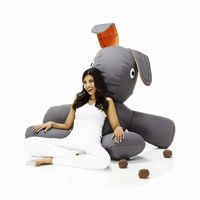 Bean bag chairs, sofa, love seats, loungers