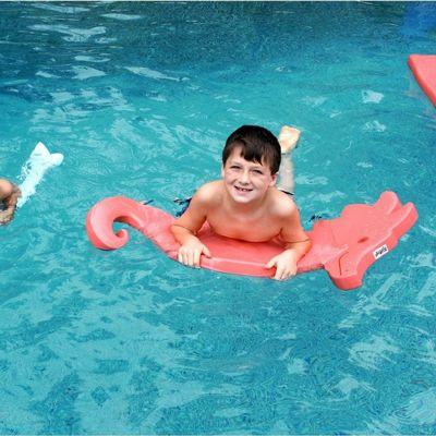 Kids Seahorse Pool Float Medium Thick Lw Ks2 Cozydays