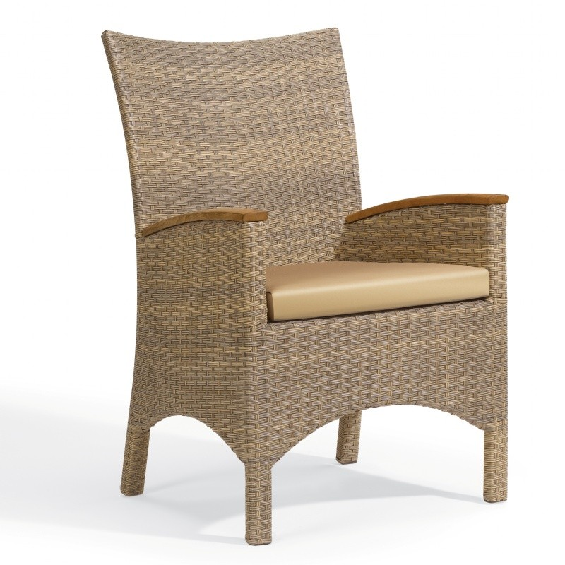 Torbay Outdoor Wicker Patio Arm Chair : Dining Chairs