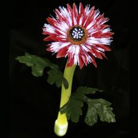 Solar Night Flowers - Daisy Solar Light SF1009
