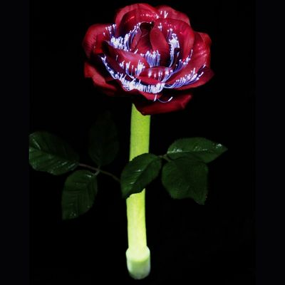 Solar Night Flowers - Rose Solar Light SF1007