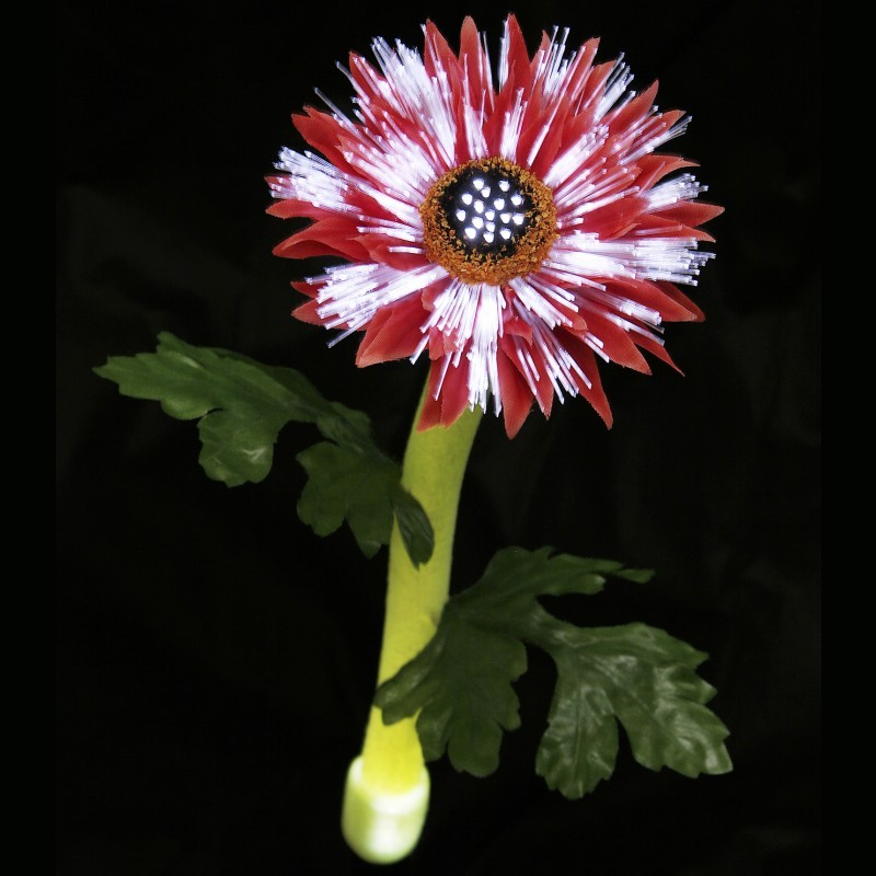 Clear Cracked Glass Garden Globe Solar Light: Solar Light Daisy