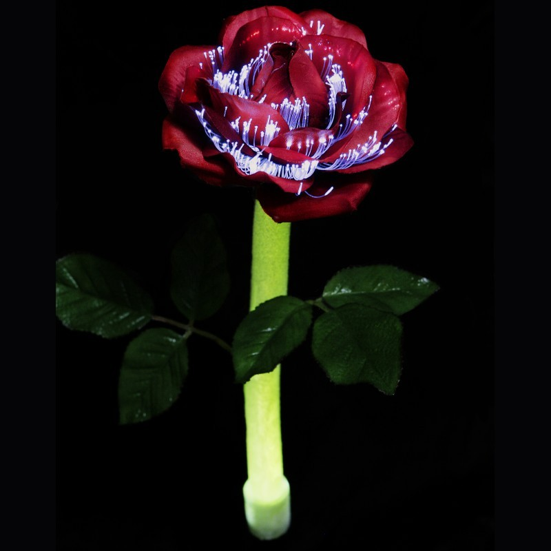 Solar Light Rose