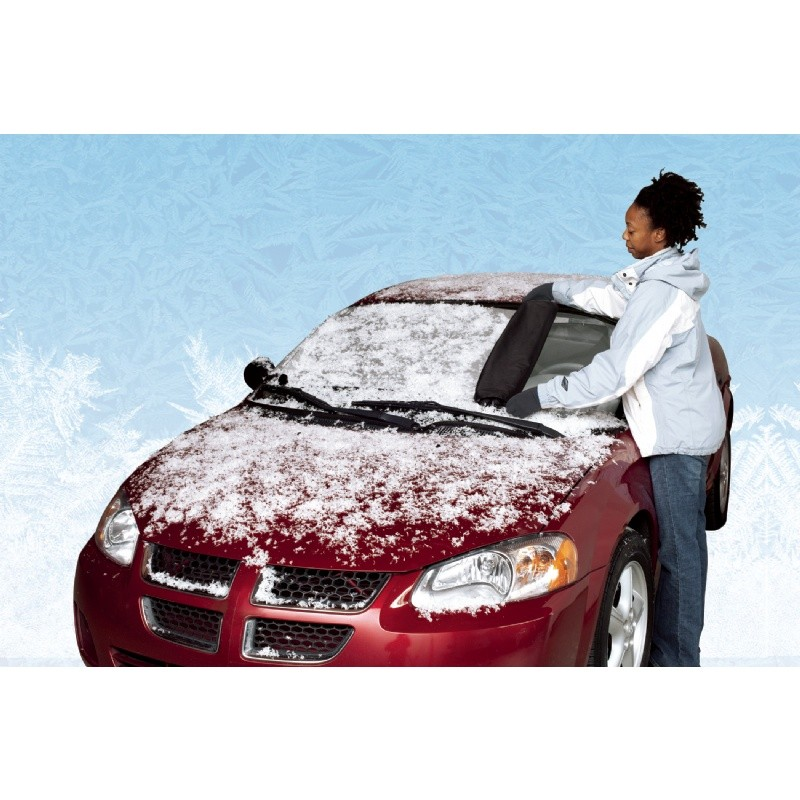 Auto Windshield Cover