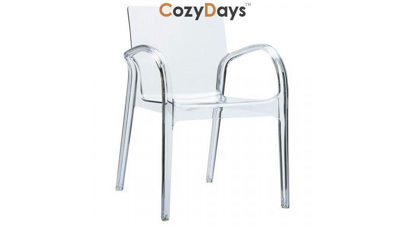 Enjoyable Dejavu Clear Plastic Outdoor Arm Chair Lamtechconsult Wood Chair Design Ideas Lamtechconsultcom